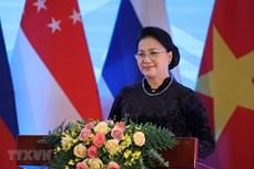 2020年越南国会的烙印