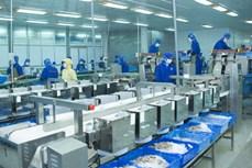 岘港市 2021 年将专注于帮扶企业促进出口