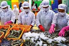 1月2日至4日出口情况:水产品顺利销往英国
