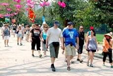 越南旅游业急切等待国际游客