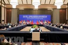 越南出席东盟—中国特别外长会