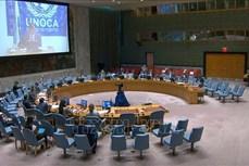 越南与联合国安理会:越南呼吁加强对话 解决中非恐怖主义挑战