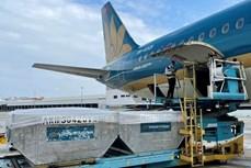 越南为运输新冠疫苗的航班创造便利条件