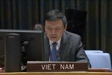 越南与联合国安理会:越南承诺促进联合国宪章和国际法的作用