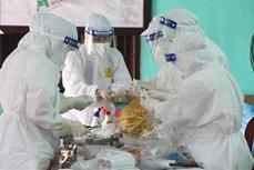 6月10日中午越南新增88例新冠肺炎确诊病例