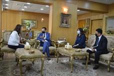 埃及多地愿与越南推进优势领域合作
