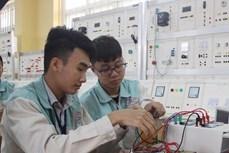 坚江省为农村劳动力职业培训出资160亿越盾