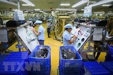 2021年前五个月越南境外投资达5.467亿美元