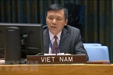 越南与联合国安理会:越南呼吁马里加强民族和谐和推进过渡进程