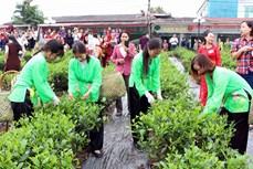 新疆将社区旅游发展与茶叶文化空间相结合