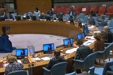 联合国安理会讨论新冠肺炎疫情对反恐造成的影响