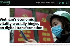 数字化转型:越南数字经济的增长为投资商带来更多机会