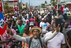 越南与联合国安理会:越南呼吁海地进行公正透明的选举
