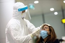 新冠肺炎疫情:河内计划在内排机场进行随机抽样检测