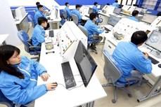 世界银行继续帮助越南解决民生保障工作中的核心问题