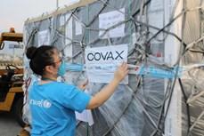新冠肺炎疫情:UNICEF将尽最大努力协助越南获取新冠疫苗