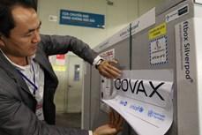 越南向COVAX追加50万美元捐款