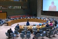 越南呼吁维持对叙利亚的人道主义援助