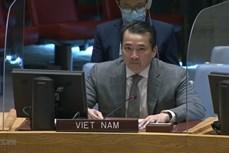 越南与联合国安理会:越南坚支持和解并结束刚果民主共和国的暴力