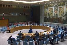 越南与联合国安理会:越南积极参加保护冲突热点地区人道主义援助人员保护