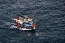 严查严处串通和勾结引导越南渔民进入外国海域从事非法捕捞的行为