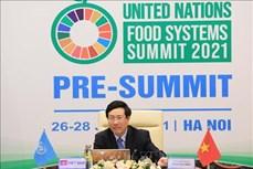 越南希望成为粮食系统的创新中心