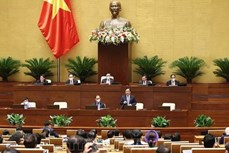 越南第十五届国会第一次会议:为农民成为新农村建设的主体奠定基础