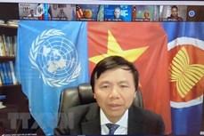 越南与联合国安理会:越南支持将性别层面纳入打击恐怖主义和暴力极端主义各方面