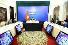 第一次湄公河之友部长会议以视频形式举行
