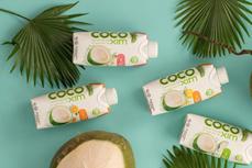 比利时商人选择越南椰子汁作为创业产品