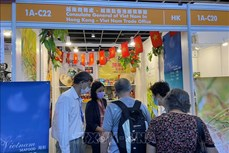 越南参加2021年中国香港食品展
