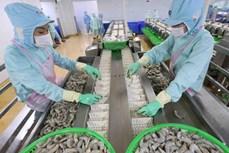 水产品出口仍是越南经济亮点