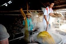 实现生计多样化  助力高棉族人摆脱贫困