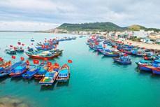 """撤销IUU""""黄牌"""":推动海洋产业融合与发展"""