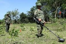 越南努力提高战争遗留爆炸物问题的解决能力
