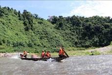 """Hiệu quả mô hình """"Hiệp đồng lực lượng"""" trong bảo vệ rừng"""