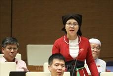Kỳ họp thứ 9, Quốc hội khóa XIV: Ưu tiên nguồn vốn giải quyết các vấn đề cơ bản của dân tộc thiểu số