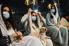Quán cà phê đầu tiên dành cho chó tại Saudi Arabia