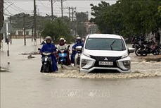 Mưa lớn gây ngập lụt tại nhiều vùng trũng thấp ở Ninh Thuận