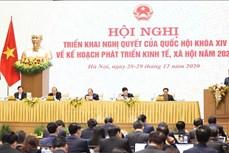 Hội nghị Chính phủ với địa phương: Đề nghị ban hành chính sách đặc thù hỗ trợ phát triển, bảo vệ rừng