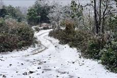 Lào Cai: Tuyết rơi dày đặc tại các xã vùng cao