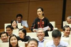 Gia Lai phát huy vai trò đại biểu Quốc hội là người dân tộc thiểu số