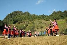 Rộn ràng không khí vui xuân, đón Tết của đồng bào dân tộc Mông (Sơn La)