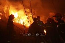 Vụ cháy tại huyện Tam Đường - Lai Châu: Lửa bùng cháy trở lại và lan rộng