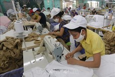 Hỗ trợ người lao động và người sử dụng lao động gặp khó khăn do đại dịch COVID-19