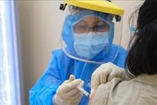 Tiêm vaccine phòng COVID-19 cho thai phụ: Lợi ích nhiều hơn nguy cơ