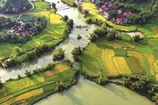 Phong Nậm – Vẻ đẹp hữu tình và thơ mộng