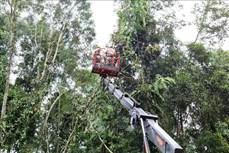 Điện Biên: Khắc phục xong sự cố mất điện do ảnh hưởng của giông lốc