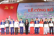 Xã miền núi Tân Lang quyết tâm nâng cao chất lượng các tiêu chí nông thôn mới