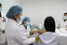 Dịch COVID-19: Rút ngắn một nửa thời gian nghiên cứu vaccine Nano Covax nhưng vẫn đảm bảo điều kiện khoa học